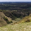 Jerry-North Downs-Apr