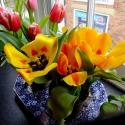 patv-flowers-april18-4