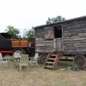 CarolS02_tractorFest