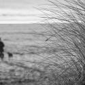 Bridgesr-Stranger-on-the-Shore-fe09